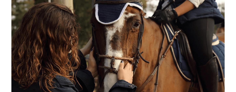 Afbeelding paard coronacrisis