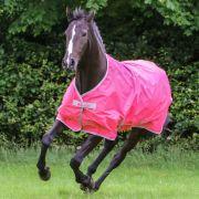 Deken Bucas Freedom 0g Pink - 27134