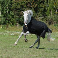 Deken Bucas Pony Irish 50g - 27058