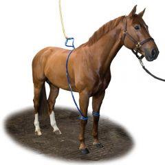 Equine Legcooler - 27880